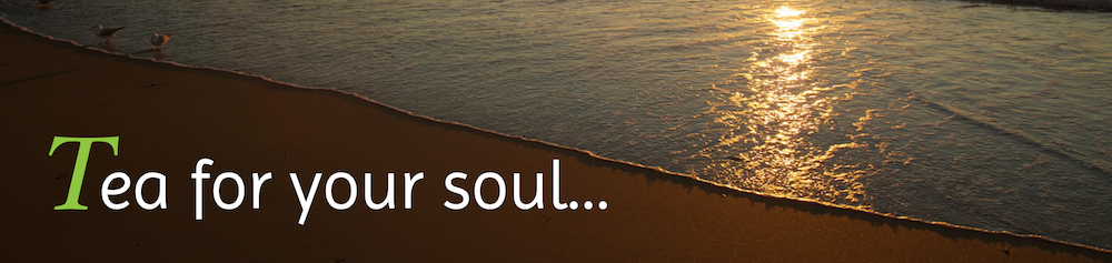Soul Banner Cropped